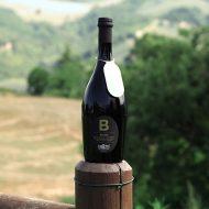 Birra Bionda La Cotta con vista delle colline del Montefeltro