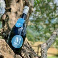 Birra Marinéra La Cotta su un albero