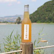 Birra La Cottina Marinèra con vista lago